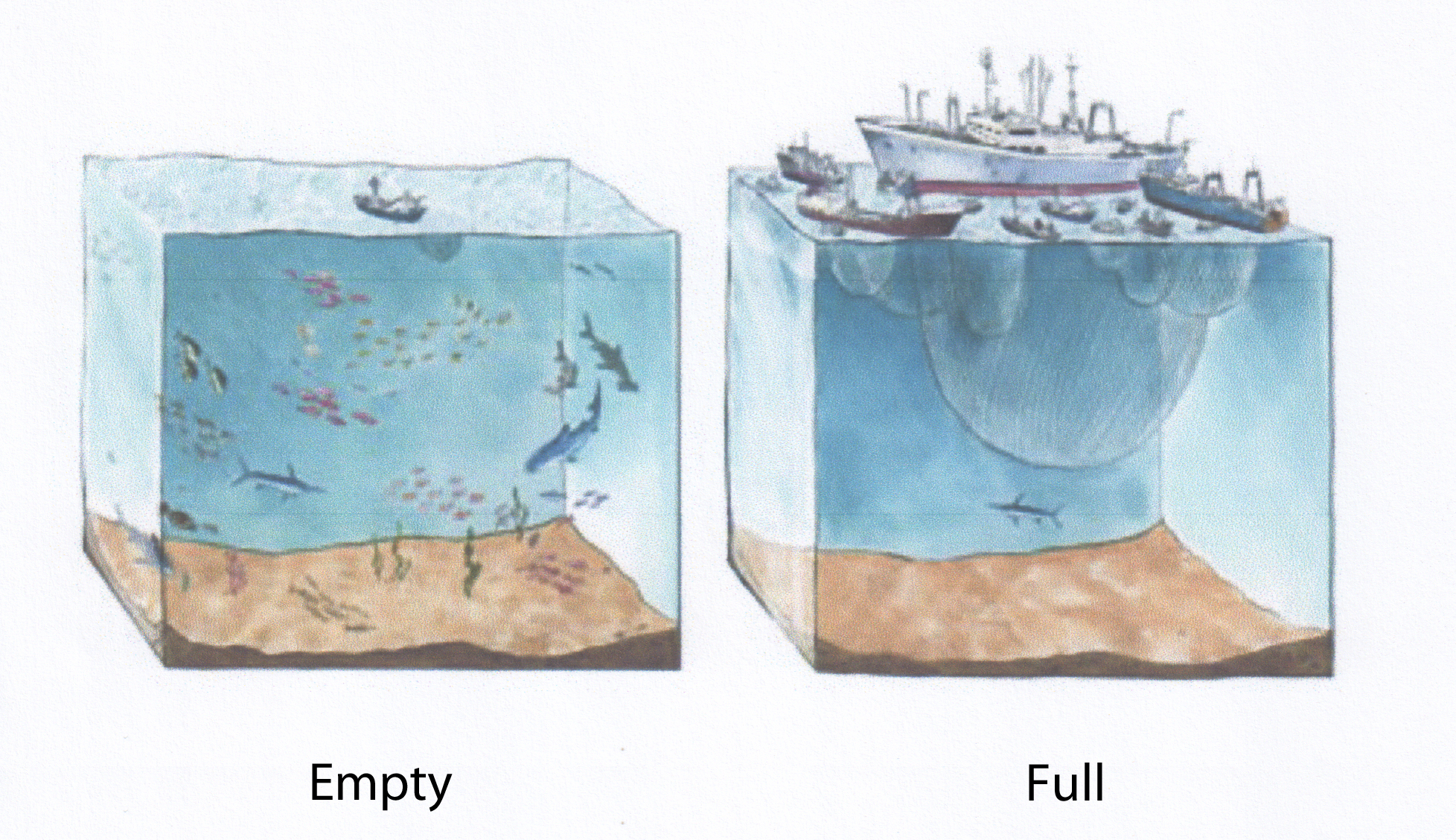 Change in Limiting Factors: Empty vs. Full World