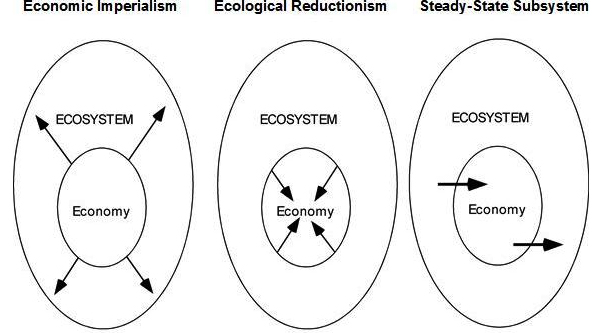 Contrasts between the three approaches to integrating economies and ecosystems