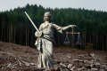 Against Ecocide: Legal Protection for Earth